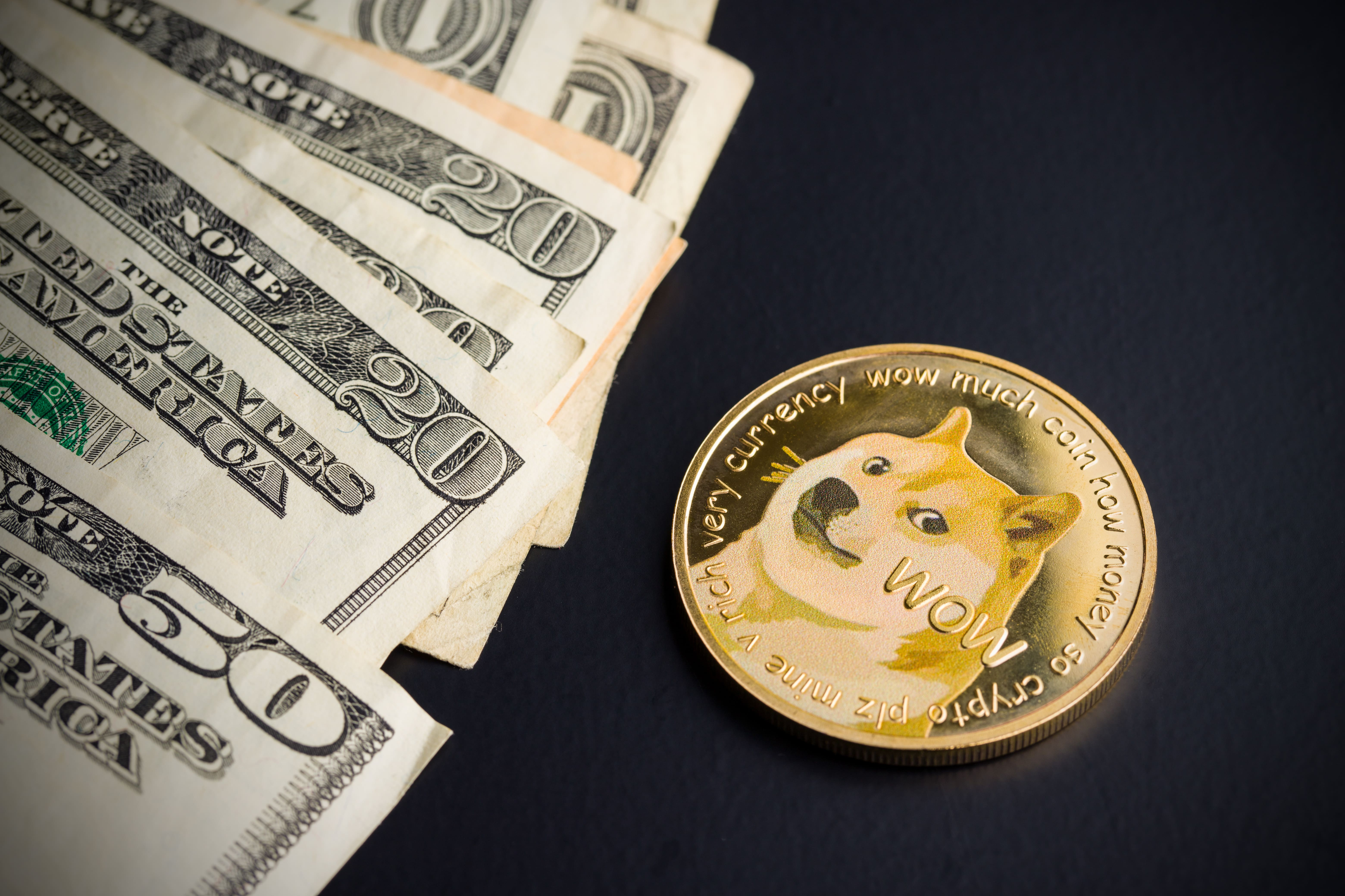 A Dogecoin token featuring a Shiba Inu dog next to $20 and $50 bills
