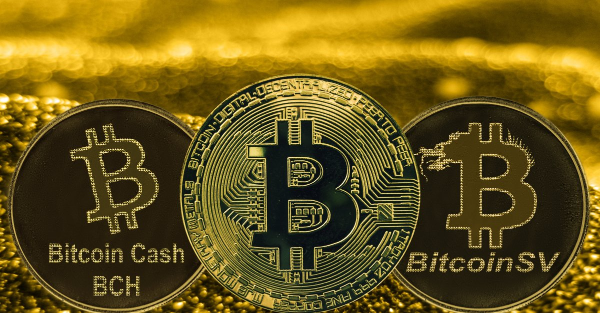 Bitcoin vs Bitcoin Cash vs Bitcoin SV: the ultimate guide | Currency.com