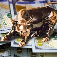 Американский фондовый рынок: как устроена его работа
