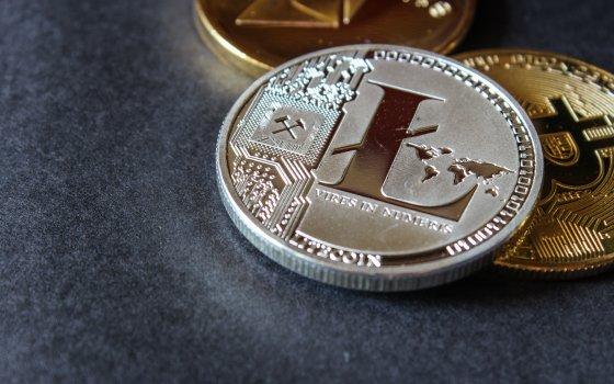 Link и LTC могут принести инвесторам десятки процентов прибыли