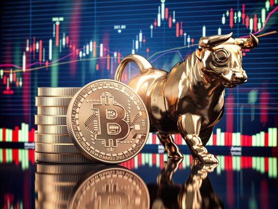 Bitcoin tokes with bull in front of stock chart