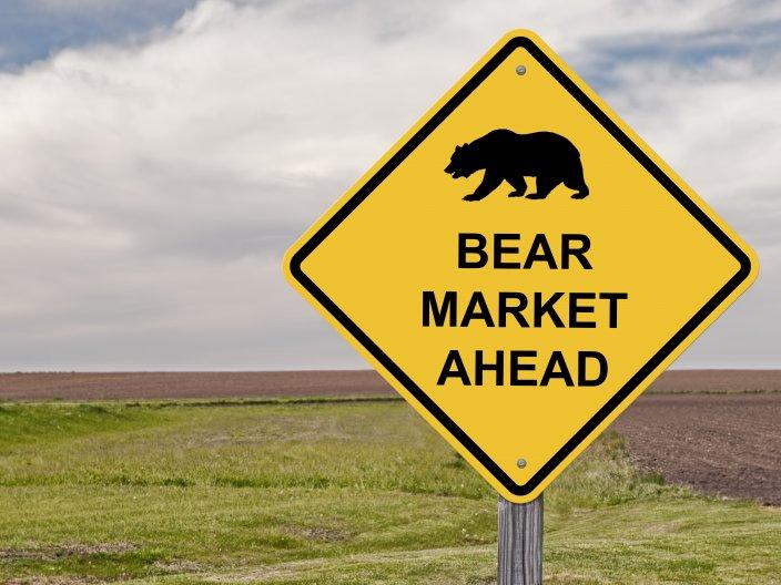Bear raid definition