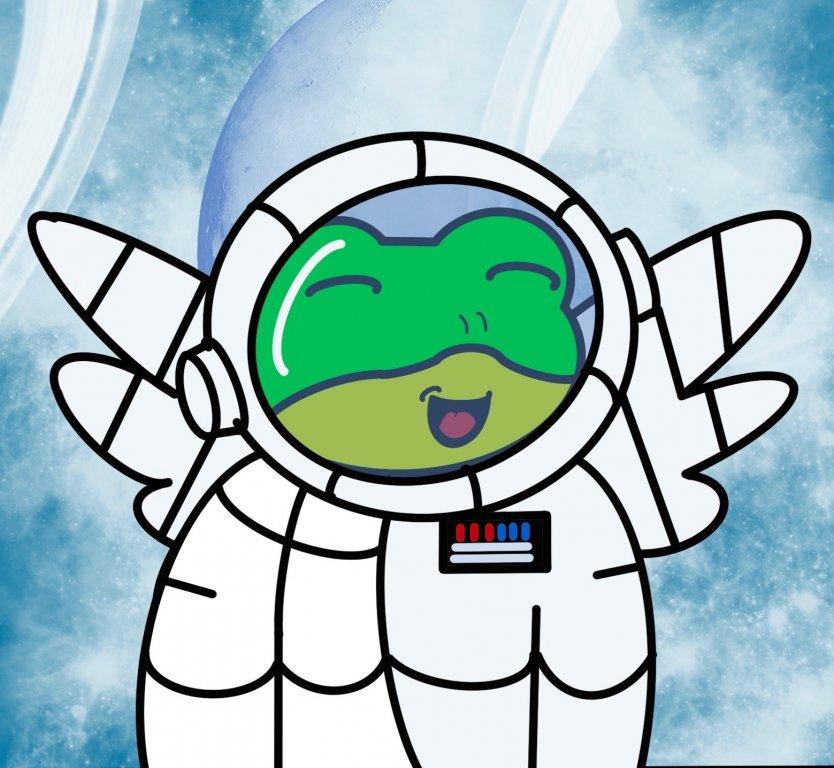 A Flying Frog NFT
