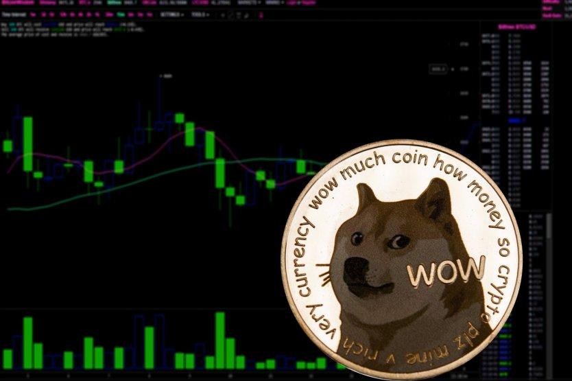 Власти Нью-Йорка подали в суд на владельцев приложения, которые перевели все активы пользователей в Dogecoin