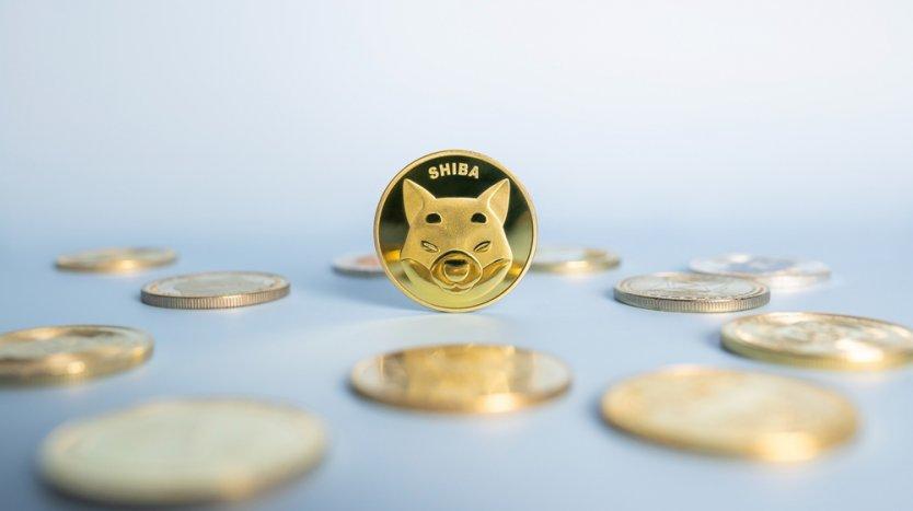 Representative image of a Shiba Inu crypto coin